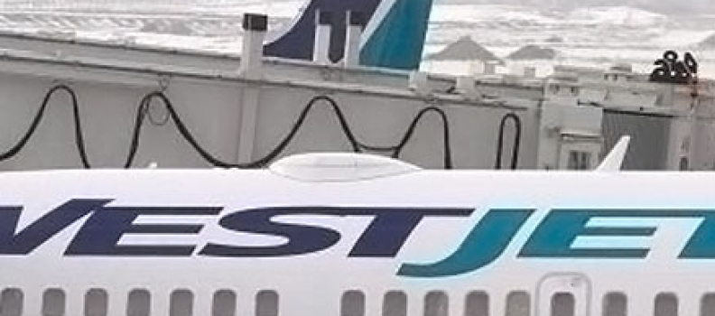 Court denies WestJet's bid to toss harassment lawsuit filed by former worker