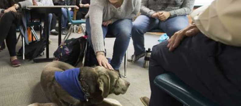 Educational assistant classes pique interest in working with disabled children