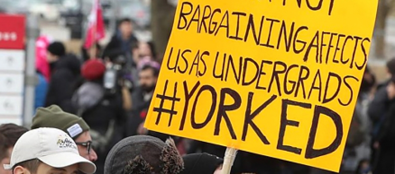 York University contract workers opt for strike after negotiations fail